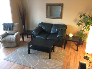 Leather couch (2 seat)