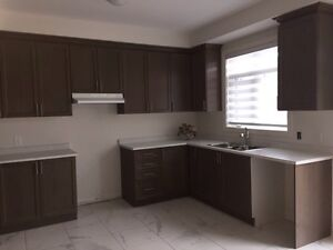 Brand new kitchen cabinets and counter