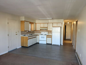 2 bed / 1 bath  800 sqft main floor HOUSE for rent