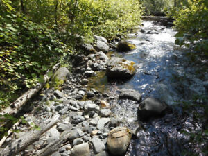 Placer Gold claim on Watching Creek Kamloops