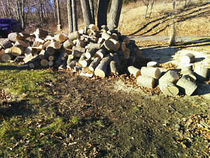 Ash Firewood for Sale
