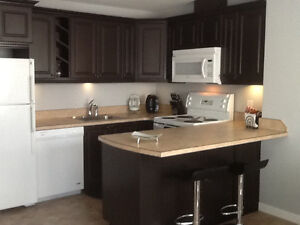 Executive 2 bedroom townhouses available for rent
