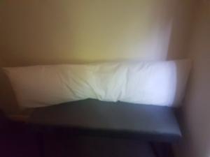 Maternity/nursing pillow