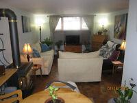 Bright Basement Apartment