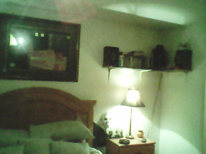 Room for rent fairview area female only