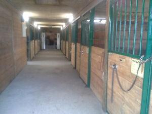 Looking for horse farm near Montreal ? revenue potential 7500/mo Regina Regina Area image 4