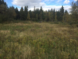8 Acre (+/-) Vacant Lot with Driveway and Well