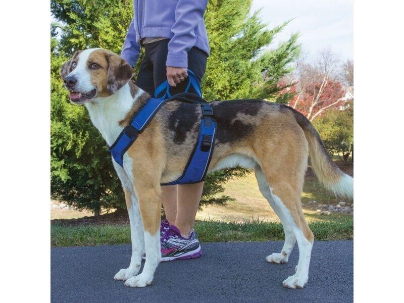 Petsafe Easysport Easy Sport Harness Padded Dog Walking