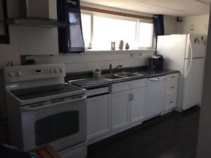 Furnished 3 bedroom basement apartment downtown