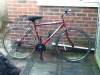 Raleigh pioneer road bike