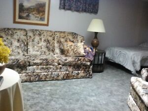 Short term (or long term) furnished, clean bsmt apt JULY 1st