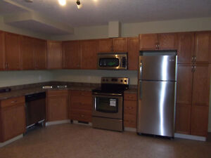 Close to downtown/River Valley/Bright and spacious