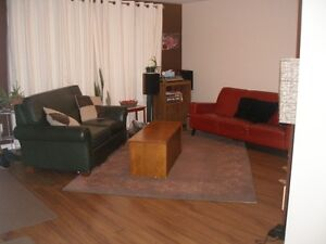 Quiet and clean town house on bus route, near 401, inclusive Cambridge Kitchener Area image 1