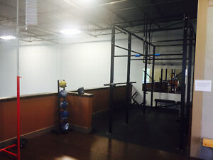 Personal training in a private gym Cambridge Kitchener Area image 7