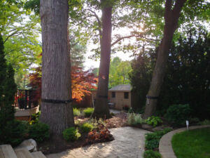 Mulch, Soil and Stone Delivery