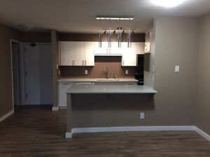 1 bedroom condo - East side - available immediately