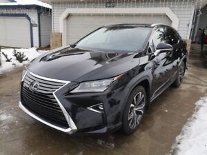 2016 RX 350 Executive Pkg (lowered)