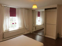 Bright double bedroom for rent in my garden flat located in De Beauvoir Conservation Area, N1.