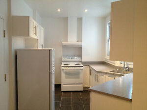 BEAUTIFUL APARTMENT INFRONT of McGILL Main Gates - MUST SEE!