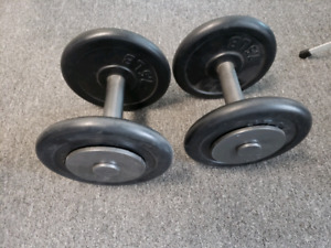 20 lbs dumbbell set / weights