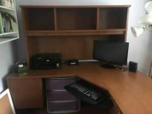Professional Computer Desk (Heavy Duty) $400 OBO