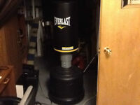Everlast Stand-up Punching Bag