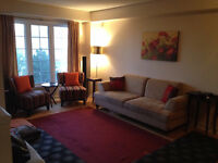 Fully furnished house