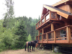 Driftwood Canyon Log Cabin Home For Rent on Airbnb