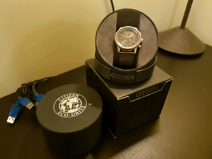 mint Citizen Eco Drive