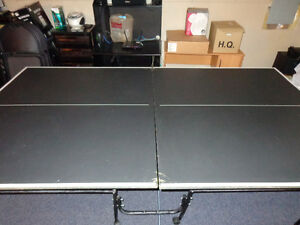 Ping-Pong Table (foldable; no net)