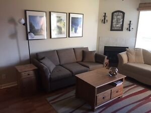 Osoyoos Furnished Condo for Snowbirds