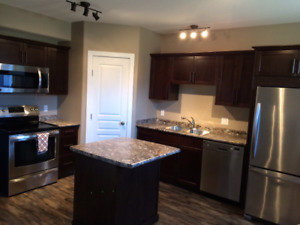2015 Furnished Duplex for Rent