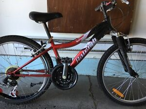 "Road mountain bike 24"".  Raleigh girls."