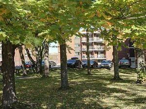 4 ½ au cœur de Cité-Universitaire, Chauffé+Éclairé+Eau cha Québec City Québec image 6