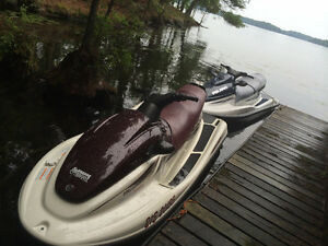 Yamaha Waverunner & Polaris Genesis + Double Trailer