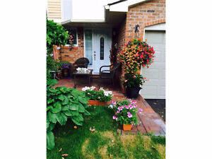 3 Storey townhome with no rear neighbors (Orleans)