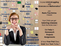 Private English + Math + Physics Tutors ! Try 75Min Lesson! ESL