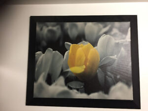 Yellow Flower Framed Picture