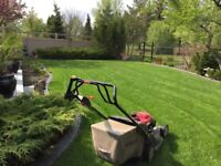 Spring Clean-up: power rake, power vac, aeration, and lawn care