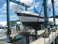 boat cleaning and detailing