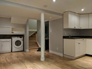 Beautifully Renovated One Bedroom Basement Apartment