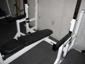 OlympiC Decline  Northern Lights Bench gym weights exercise