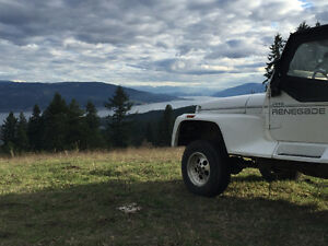 1992 Jeep Wrangler Renagade Coupe (2 door)