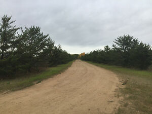 Beautiful 54ac min from Athabasca close to river and golf course
