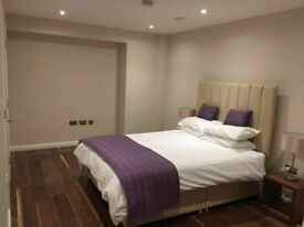 FANTASTIC ROOM AVAILABLE FOR RENT 5 MIN FROM STRATFORD STATION