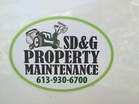 Lawn Maintenance & Spring Cleanup