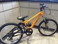 """20"""" wheel mountain bike boys or girls free delivery within 3 mile road"""
