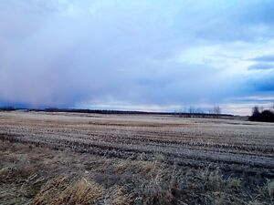 UNRESERVED AUCTION - 2 PARCELS OF FARMLAND - FAWCETTE, AB