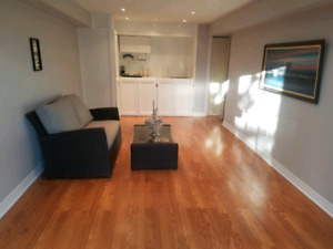 Newly Renovated Bachelor Apartment in Ajax- $940