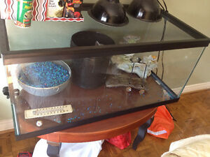 55 Gallon Tank with all accessories
